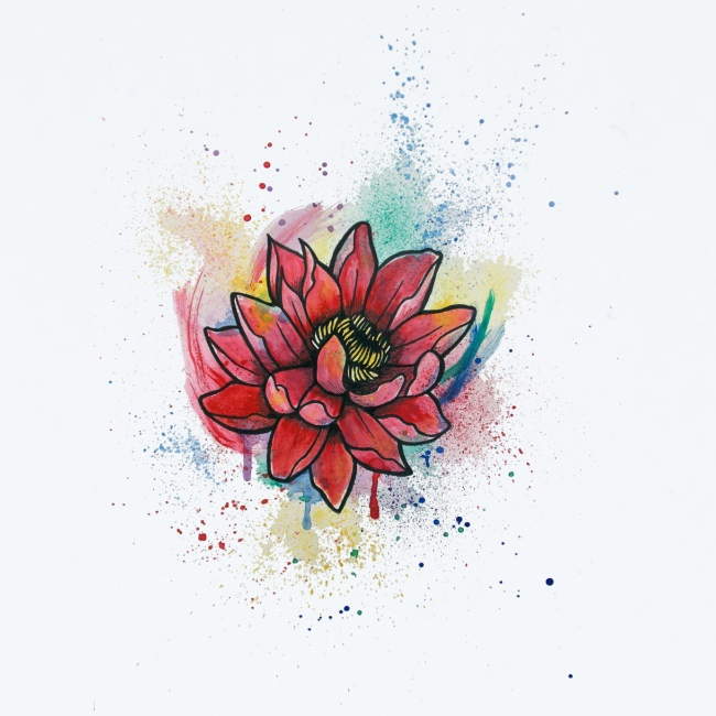 Waterlily Watercolors Nadia Luongo