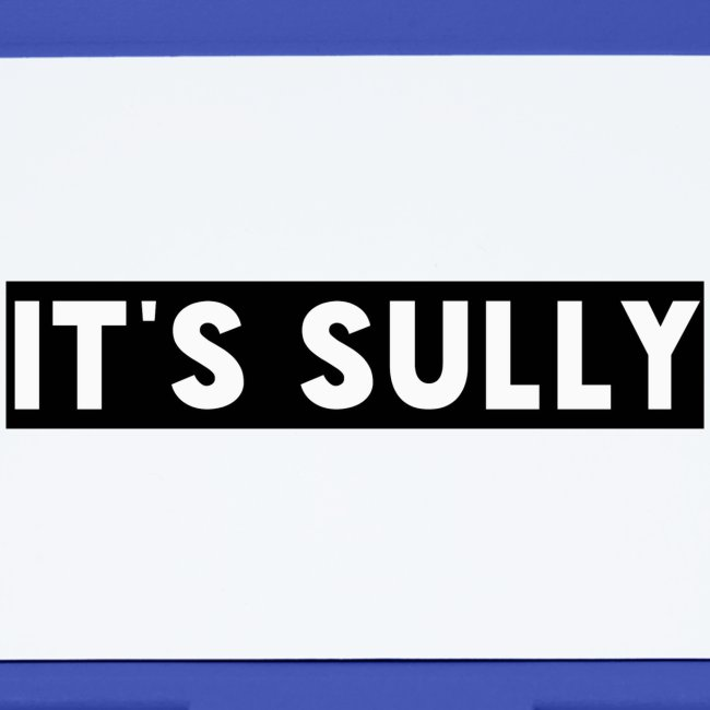 ITS SULLY
