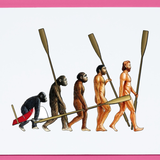 Evolution of Rowers