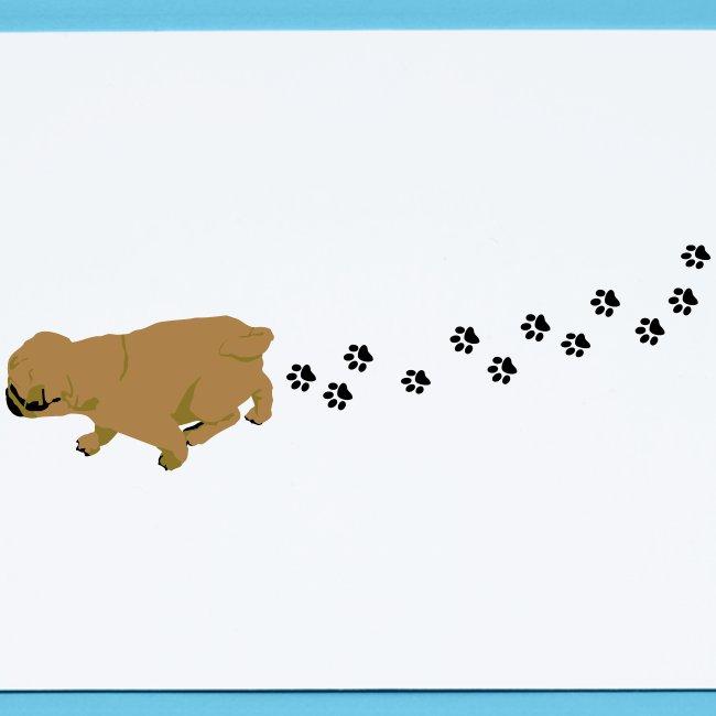 Mops Hund läuft