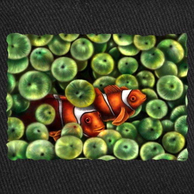 Pesci Pagliaccio