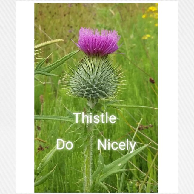 IMG 20180301 221949 Thistle Do Nicely