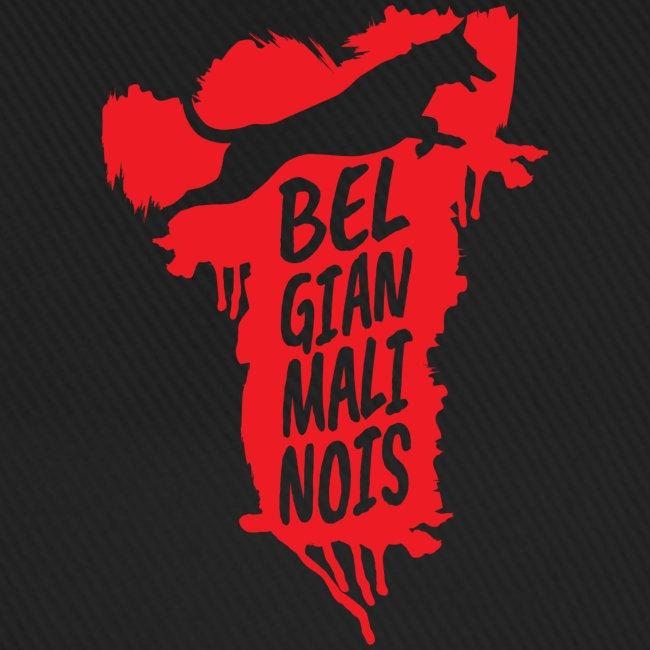 Belgian Malinois JUMP