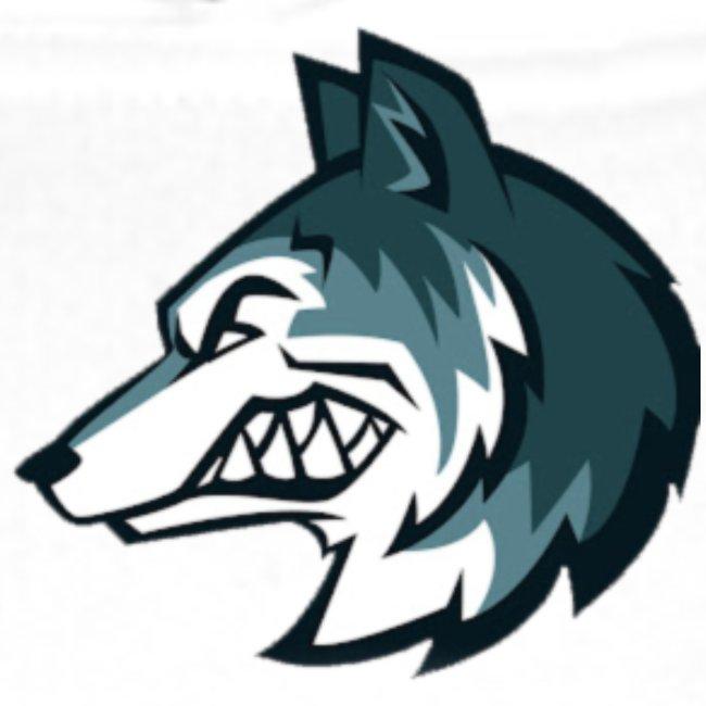 Logo Saulight