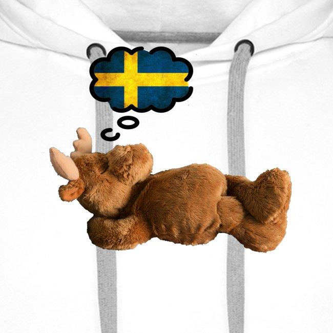 Traum von Schweden