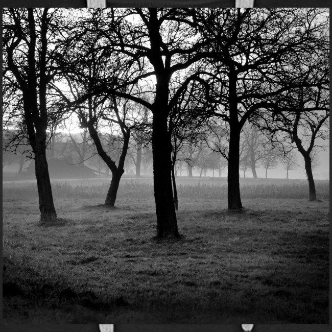 Nebelbäume