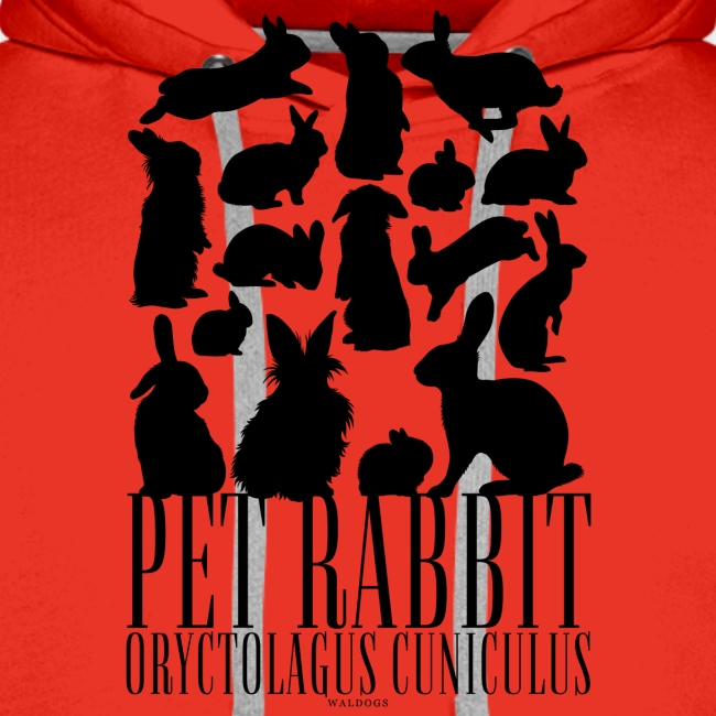 Pet Rabbit Black