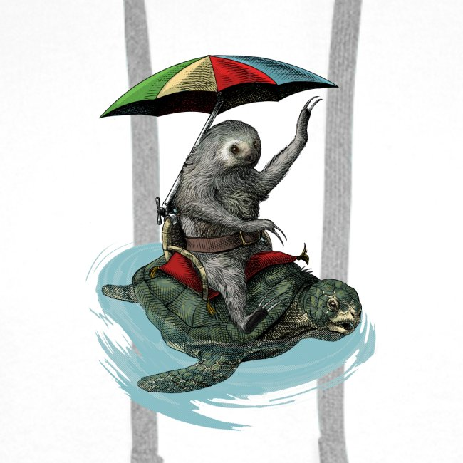 Two toed Sloth riding a turtle