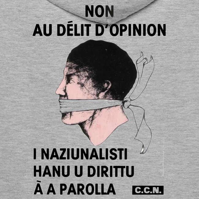 délit opinion
