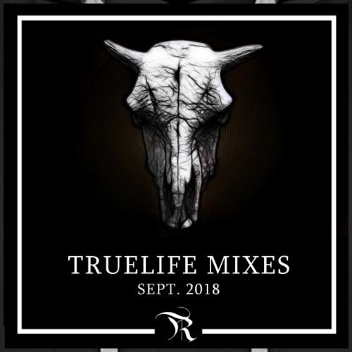 TrueLife Sept Mixes - Sudadera con capucha premium para hombre