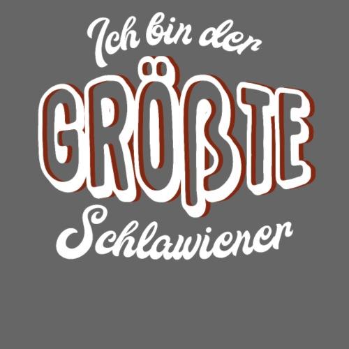 VORNE Schlawiener / HINTEN Sorry - Männer Premium Hoodie