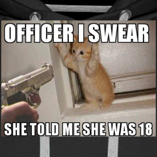 Officer I Swear She Told Me She Was 18