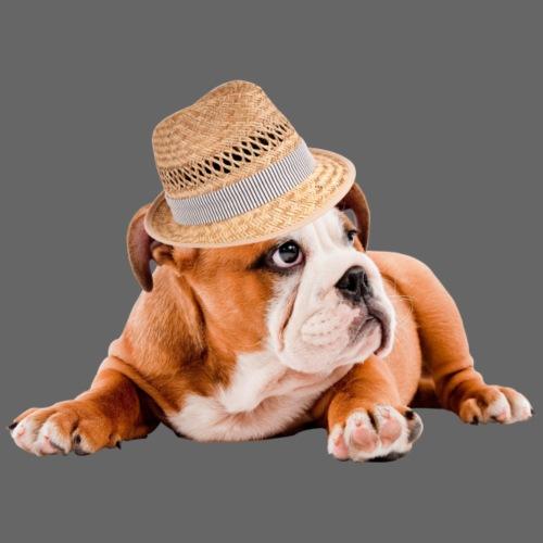 gros chien avec chapeau de paille - Sweat-shirt à capuche Premium pour hommes