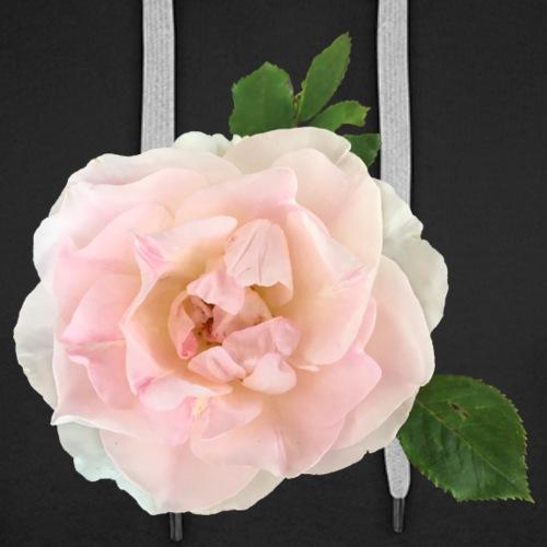 Ruusu Morden Blush - Miesten premium-huppari