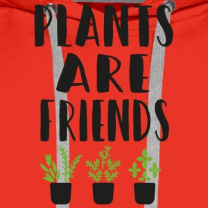 PLANTS are friends - Männer Premium Hoodie