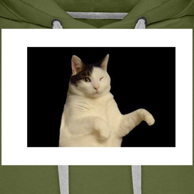 Kitty cat
