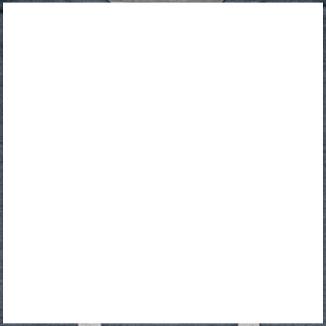 barra bianca