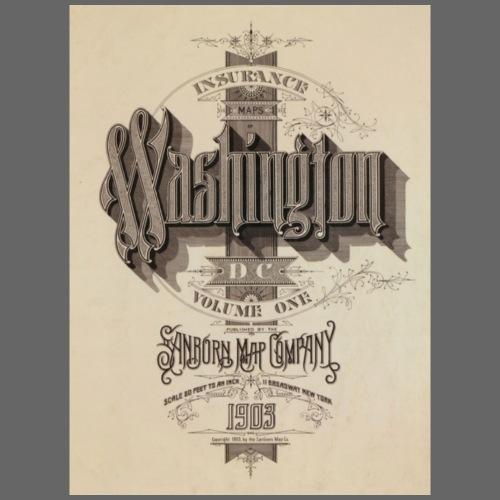 Vintage Washington 1903 design