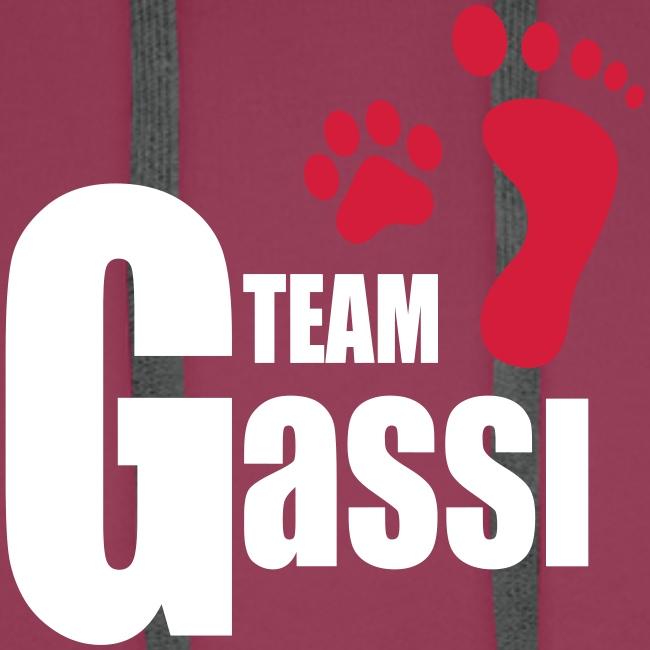 Vorschau: Team Gassi - Männer Premium Hoodie