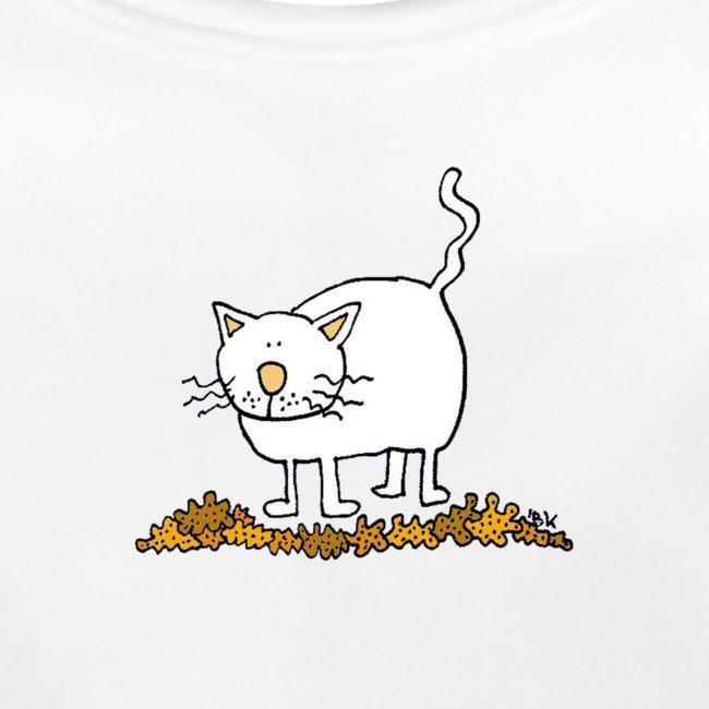 fat cat trans