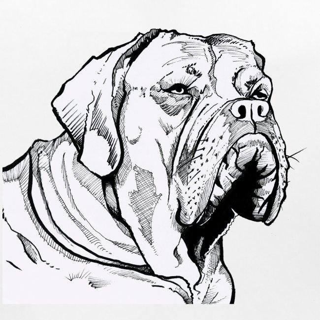 BULDOG Portrait animalier