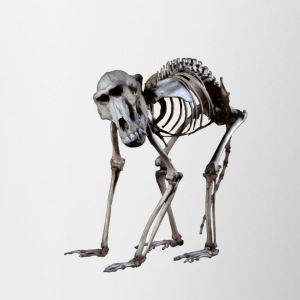 Et Baboon Skeleton af Wild World Designs (WWD) - Tofarvet krus