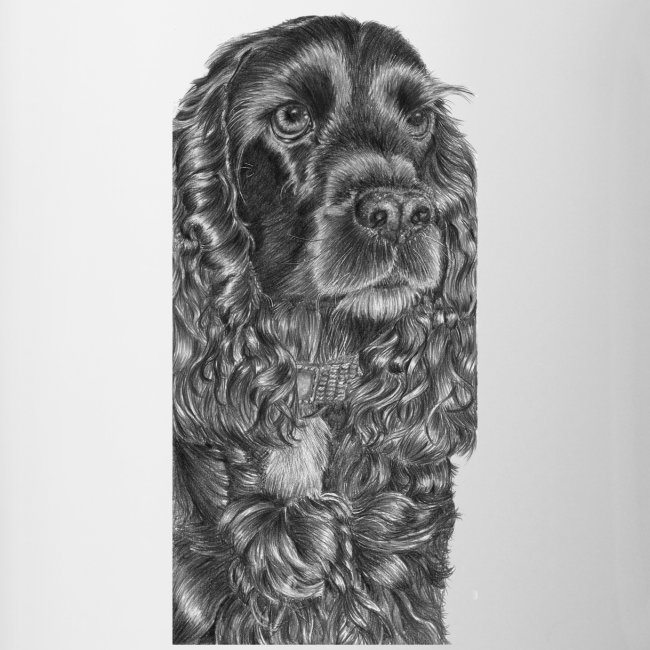 cockerSpaniel black - M