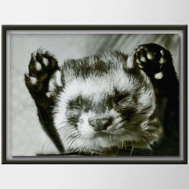 hands up1
