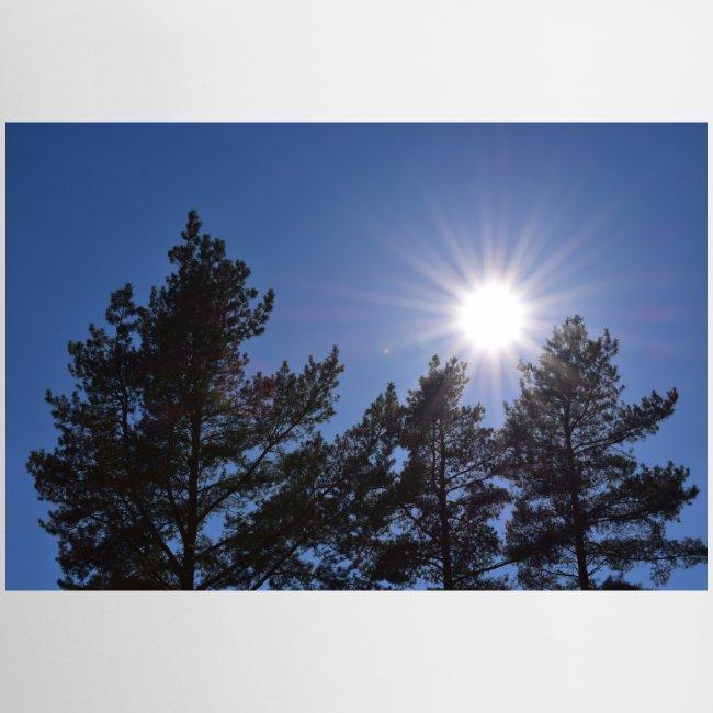 Aurinko maisema