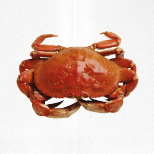 Red crab - Flexfit Baseball Cap