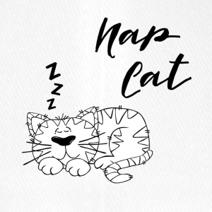Cat Nap - Casquette Flexfit