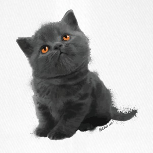 The British Shorthair - Cute Kitten - Casquette Flexfit