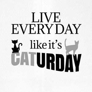 Live every day like it's Caturday - Flexfit Baseball Cap