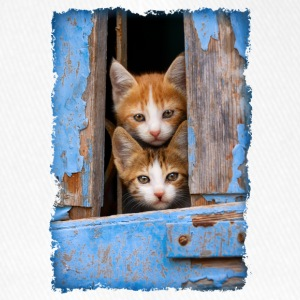 Curious kittens looking out a blue window - Flexfit Baseball Cap
