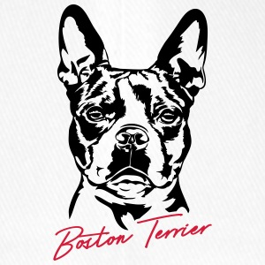 BOSTON TERRIER - Flexfit Baseballkappe