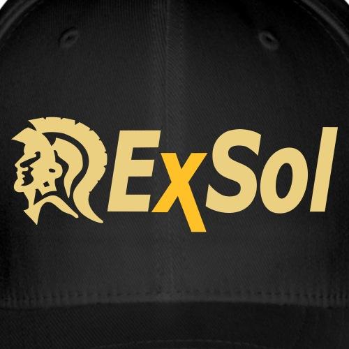 exsol logo cap1