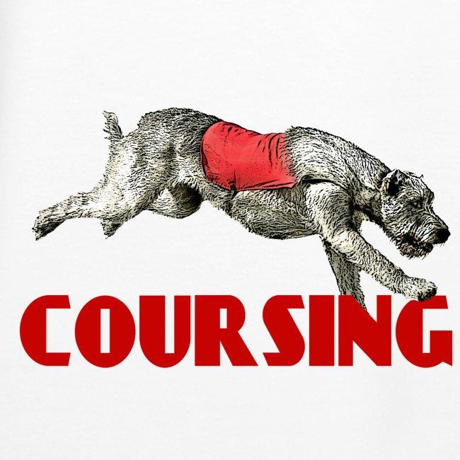 Irish wolfhound 8