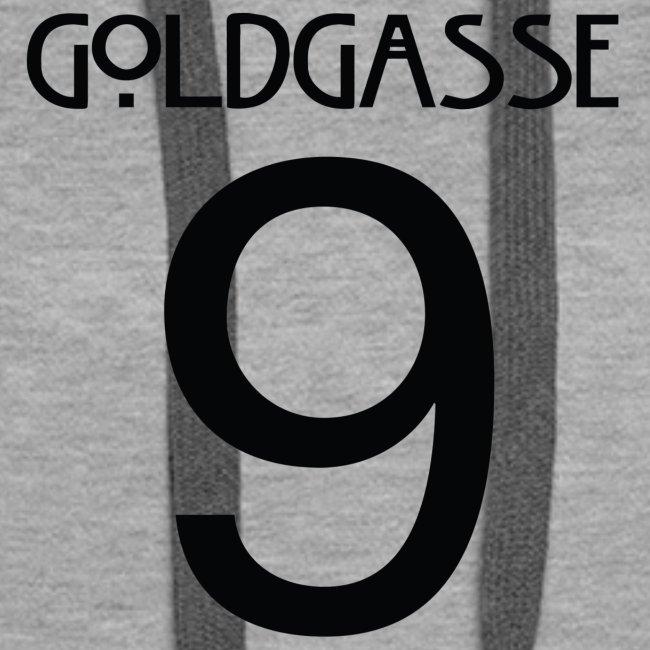 Goldgasse 9 - Back