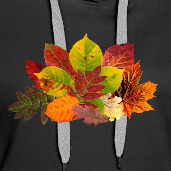 Herbst Laub Blätter