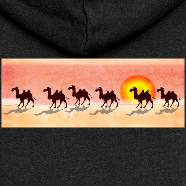 Kamele on tour