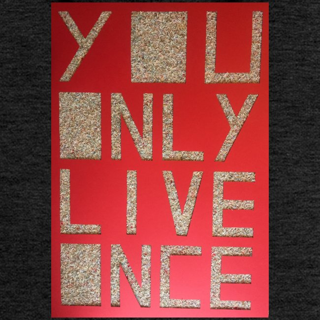Thomas Schöggl ART YOU ONLY LIVE ONCE