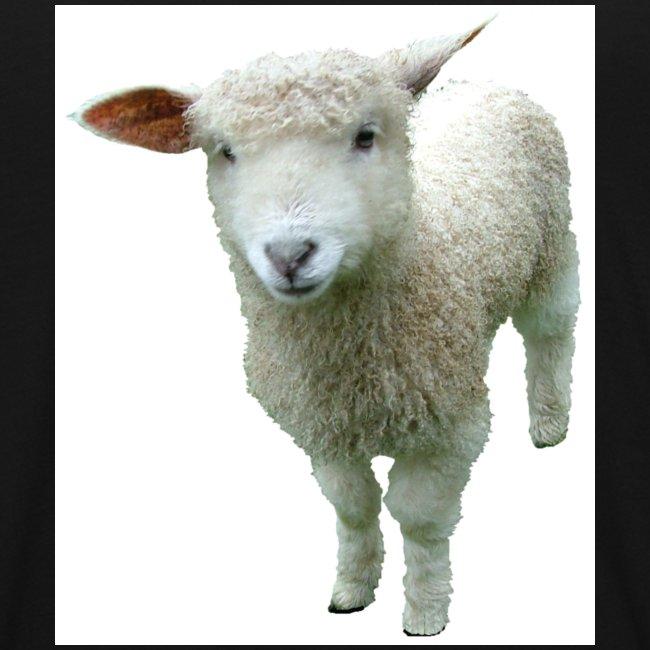 bææ lamb t skjorte