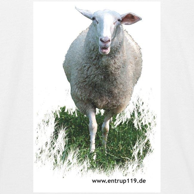 Gemaltes Entrup Schaf