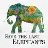 Save The Last Elephants - Frauen Bio-T-Shirt