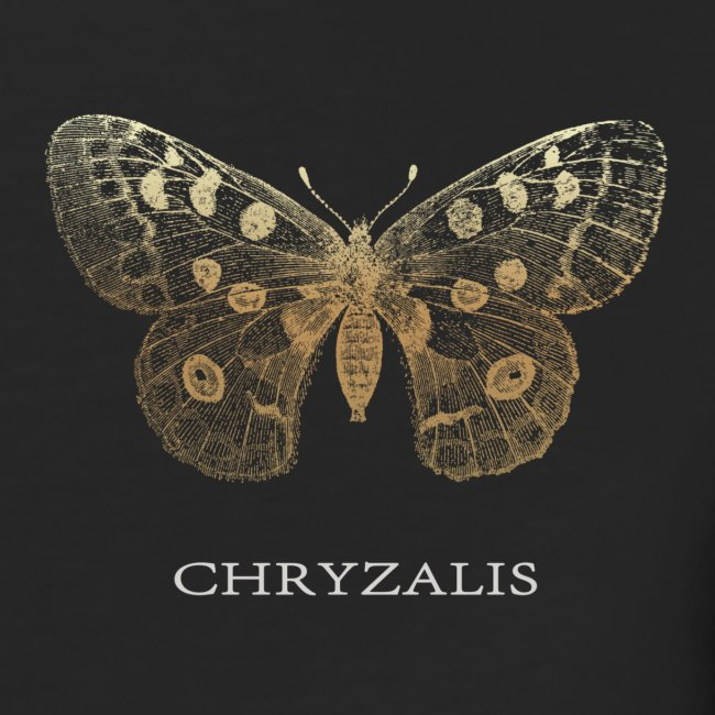 Chrysalis-transparent-PNG