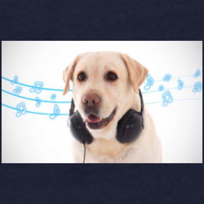 Hond Met Koptelefoon Op Borst