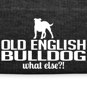 OLD ENGLISH BULLDOG what else - Winter Hat