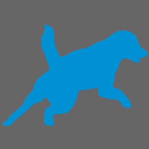 Apportering till vardag och fest hund - Vintermössa