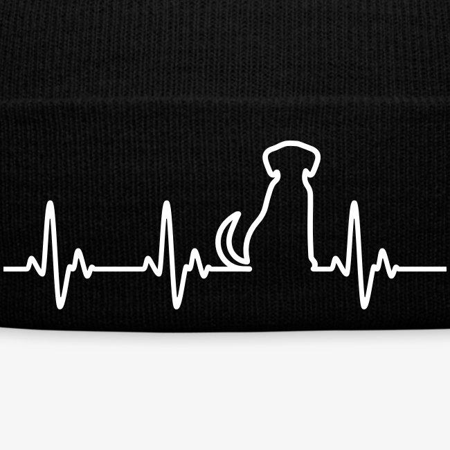 Hunde Herz