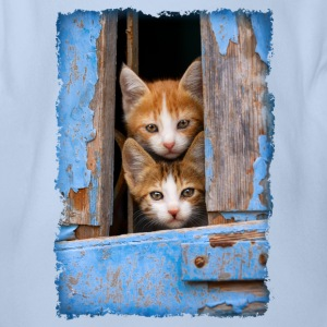 Curious kittens looking out a blue window - Organic Short-sleeved Baby Bodysuit